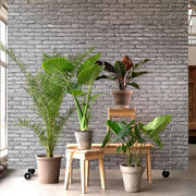 PHM-34 Silver Brick Wallpaper By Piet Hein Eek-Lime Lace