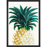 Pineapple Sweet Framed Wall Art - MINDTHEGAP-Lime Lace