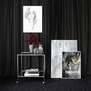 Stardom, Lady Lovely & Copenhagen Prints