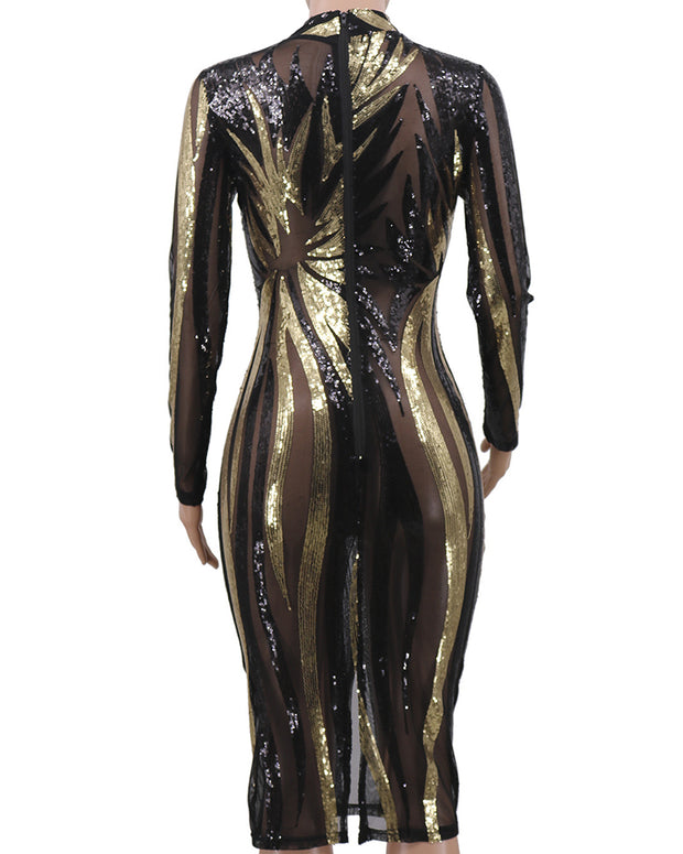 Shining See Through Sequin Bodycon Dress