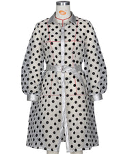 Polka Dot Print Belted Shirt Dress
