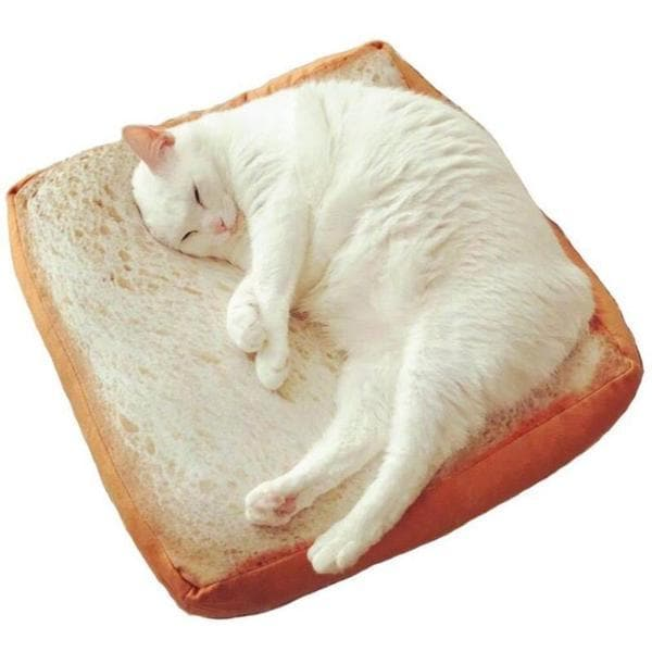 a cat sleep on the bread shaped cat sleeping mat