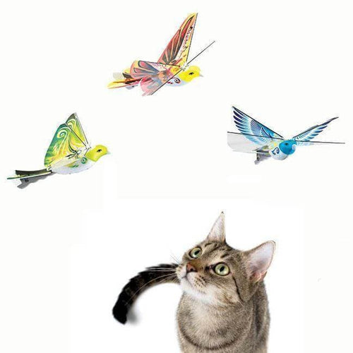 NEW! Flying Bird Drone For Cats