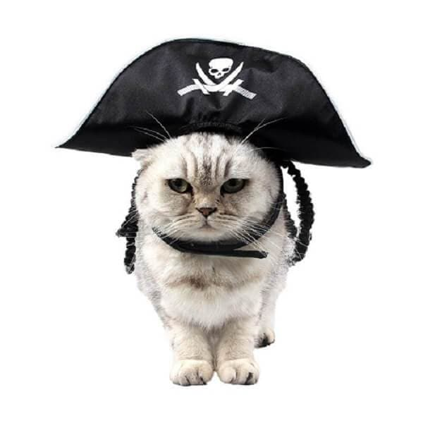 Funny Cats Halloween Pirate Hat