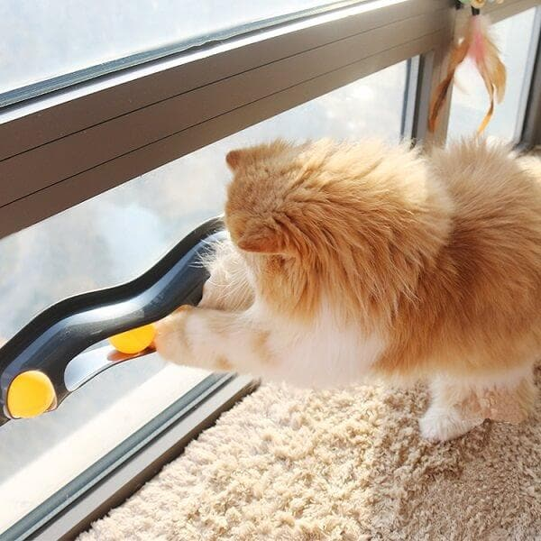 Window Mount Ball Track Toy For Cats
