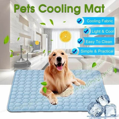 a dog sitting on the pets cooling mat