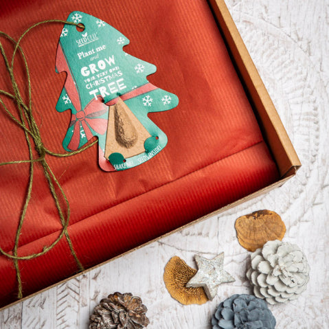 Christmas Gift Sets For Kids That Love Nature