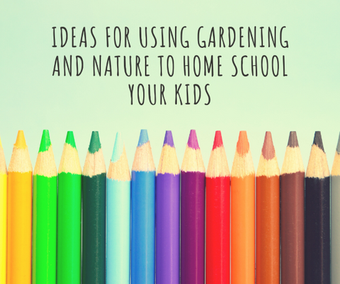 Title photo with colourful pencils for ideas for using gardening and nature to home school kids