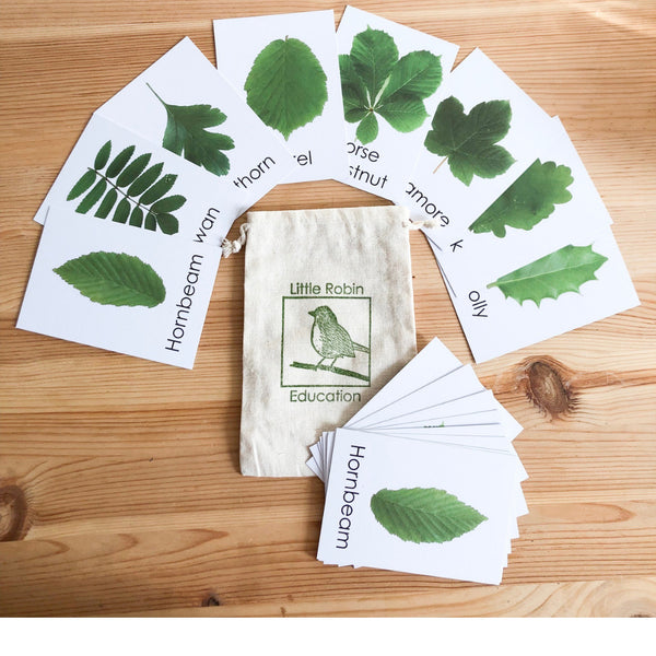 Little Robin Education Leaf Flashcards for children