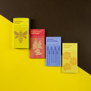 Piccolo Pollinators Seed Collection packets with outer packaging