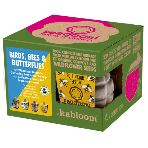 Seedbom birds bees and butterflies gift box for kids