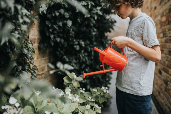 Child using the Haws Bartley Burbler children watering can in red