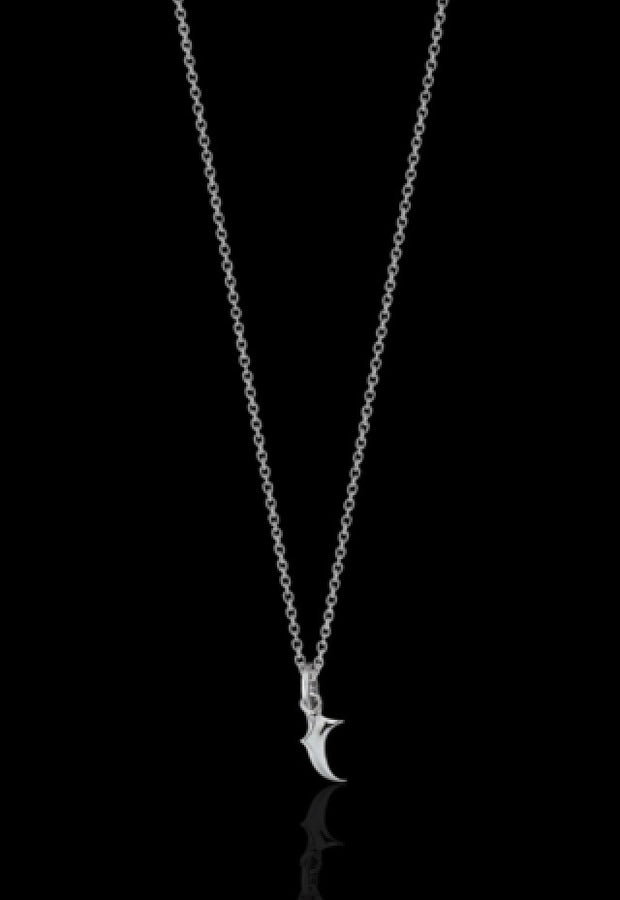 Claw Charm Necklace