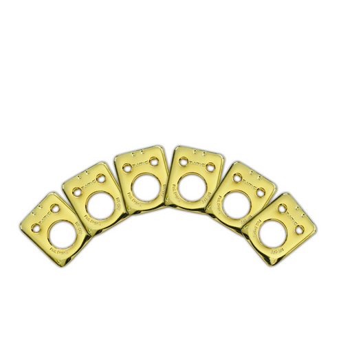 Graph Tech Ratio InvisoMatch Premium Mounting Plates For Fender Style 2 Pin Hole - Gold