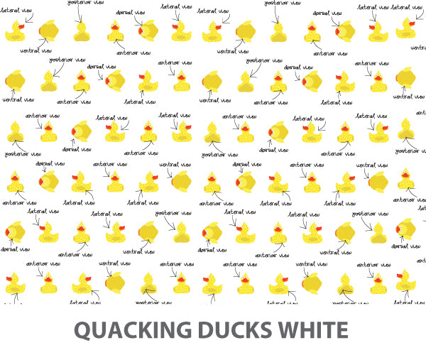 Quacking Ducks Wallpaper