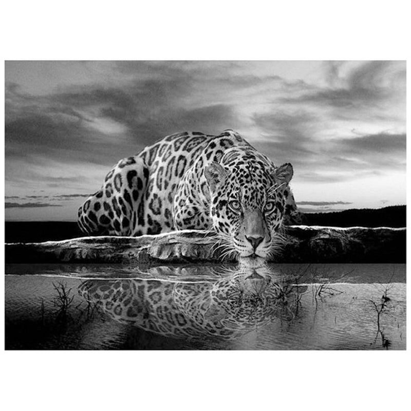 5D DIY Black & White Leopard Diamond Painting