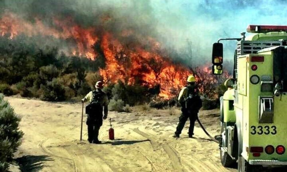 Tips for Landing A Job as A Wildland Firefighter