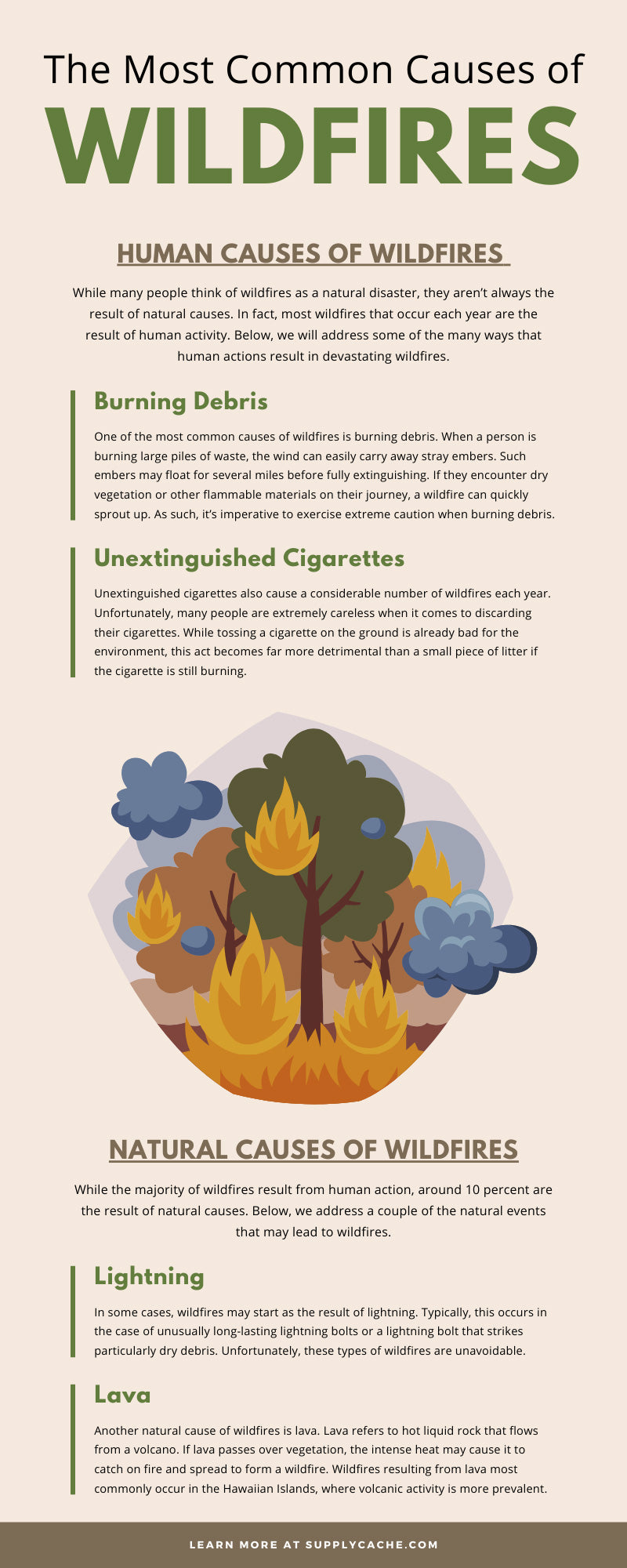The Most Common Causes of Wildfires