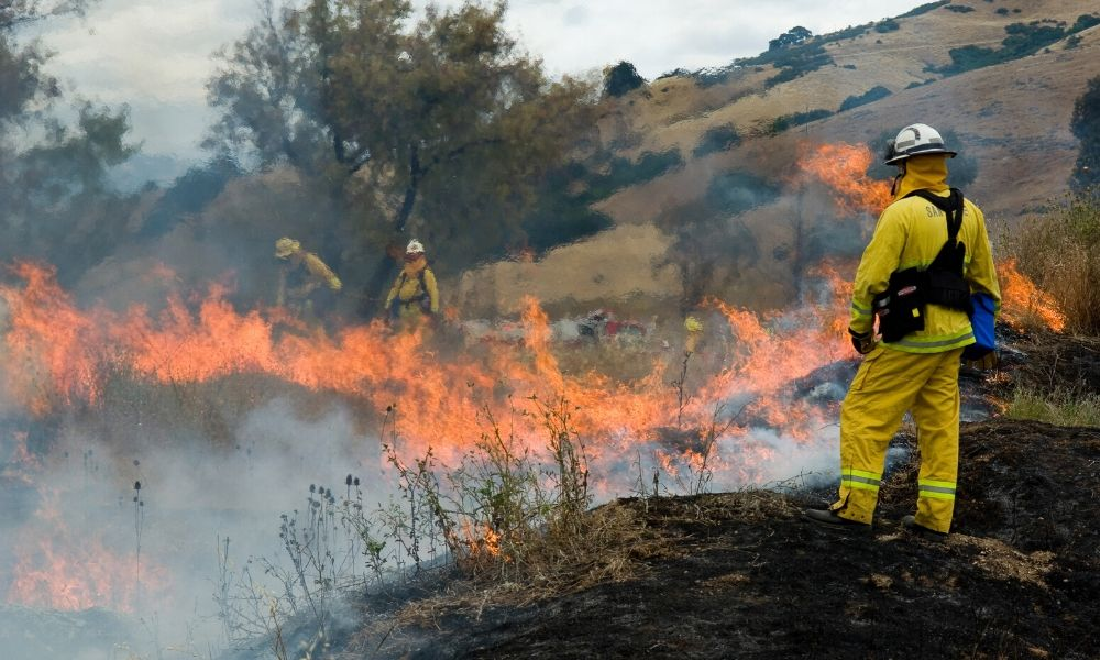 Safety Tips for Wildland Firefighters