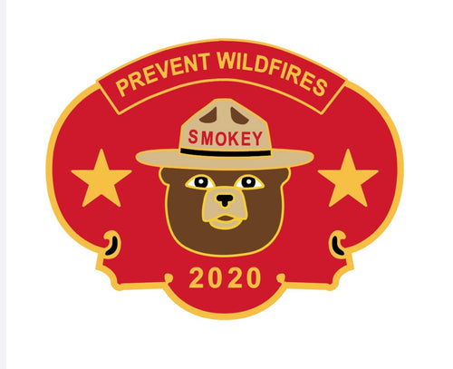 Smokey Bear Year Pin, 2020