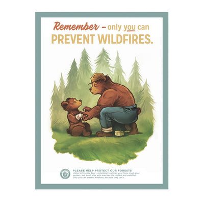 Smokey Bear Prevent Wildfires Poster, The Landmark Project