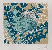 Load image into Gallery viewer, SCREEN PRINT - Banksia Baxteri Study 01. Edition of 7. Unframed.