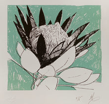 Load image into Gallery viewer, SCREEN PRINT -  King Protea Study 02.        Edition of 6. Unframed.