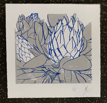 Load image into Gallery viewer, SCREEN PRINT - King Protea Closed Study 02.     Edition of 6. Unframed.