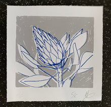 Load image into Gallery viewer, SCREEN PRINT - King Protea Closed Study 01.     Edition of 6. Unframed.