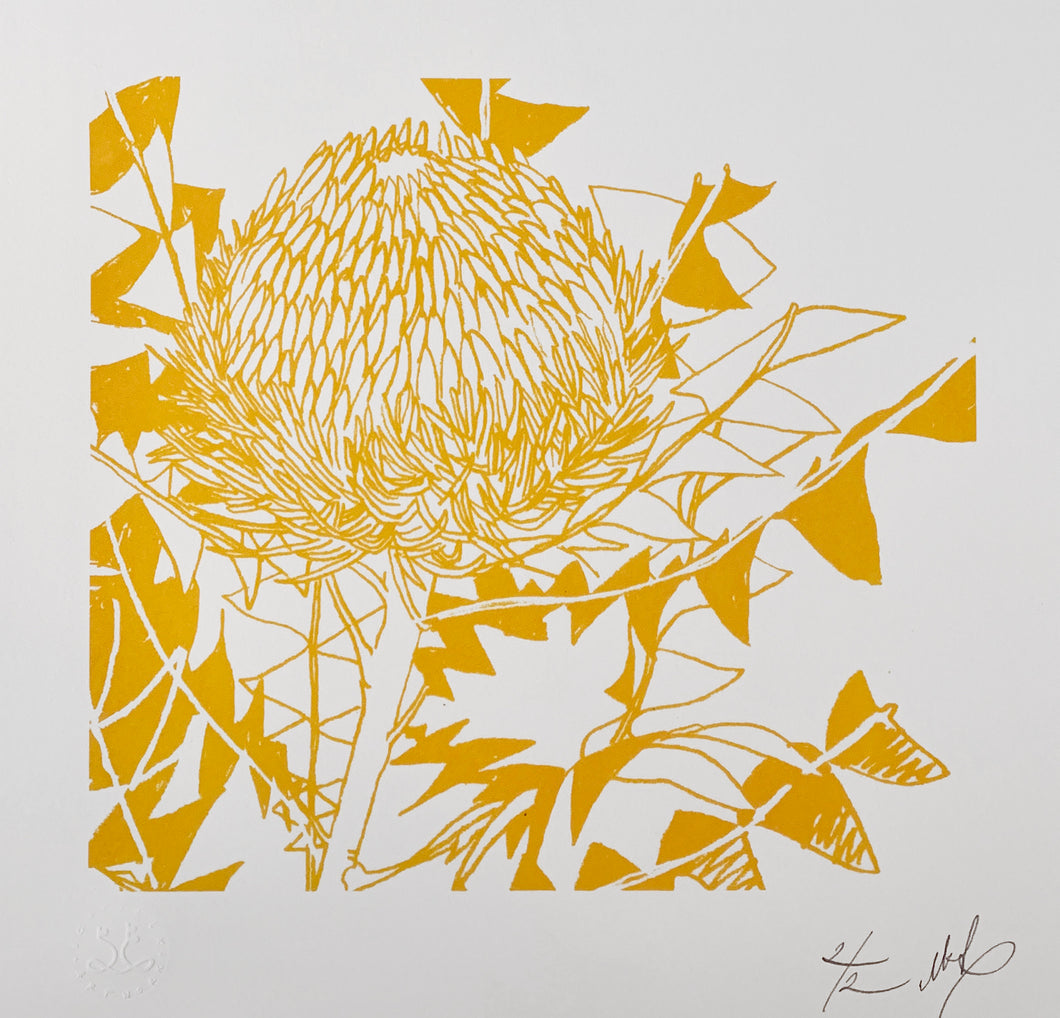 SCREEN PRINT - Banksia Baxteri Amy - One Colour. Edition of 2. Unframed.