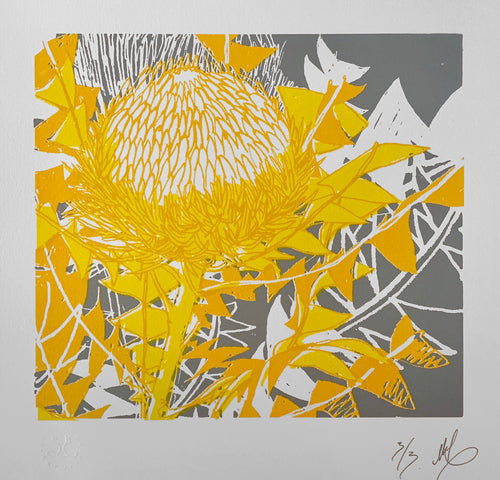 SCREEN PRINT - Banksia Baxteri Amy - Yellow & Grey. Edition of 3. Unframed.