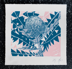 SCREEN PRINT - Banksia Baxteri Noelene. Edition of 7. Unframed.