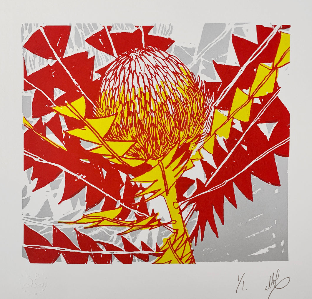 SCREEN PRINT - Banksia Baxteri Noelene - Red & Yellow. Edition of 1. Unframed.