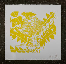 Load image into Gallery viewer, SCREEN PRINT - Banksia Baxteri Noelene - One Colour. Edition of 2. Unframed.
