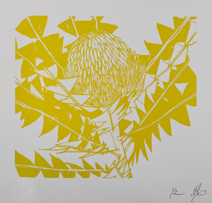 SCREEN PRINT - Banksia Baxteri Noelene - One Colour. Edition of 2. Unframed.