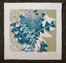Load image into Gallery viewer, SCREEN PRINT - Banksia Baxteri Study 02. Edition of 7. Unframed.