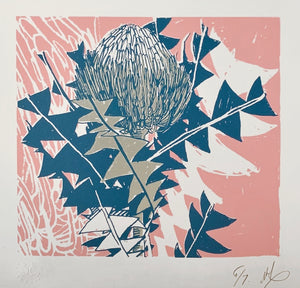SCREEN PRINT - Banksia Baxteri Study 02 - Pink. Edition of 7. Unframed.