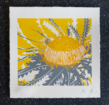 Load image into Gallery viewer, SCREEN PRINT - Banksia Formosa Study 01 - Yellow & Grey. Edition of 5. Unframed.