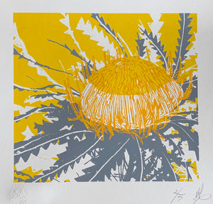 SCREEN PRINT - Banksia Formosa Study 01 - Yellow & Grey. Edition of 5. Unframed.