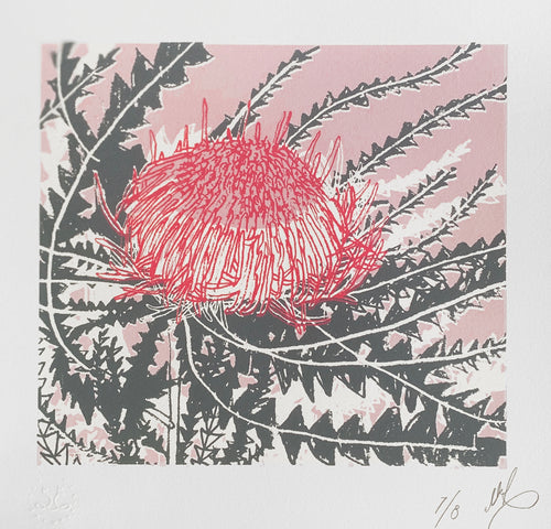 SCREEN PRINT - Banksia Formosa Study 02 - Pink & Grey. Edition of 8. Unframed.