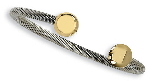 Stainless Steel Gold Accent Cuff Bangle