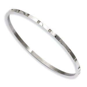 Stainless Steel Polished and CZ Bangle