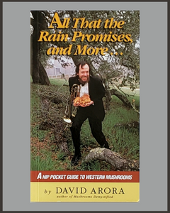All That The Rain Promises And More-David Arora
