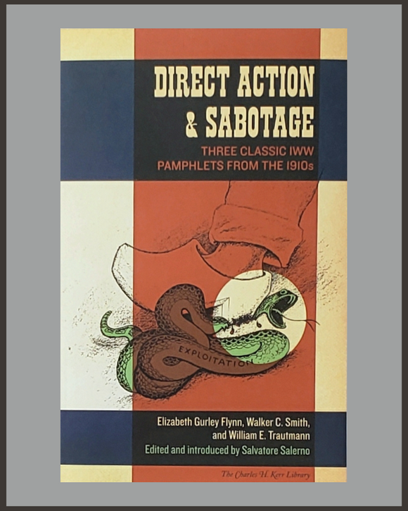 Direct Action & Sabotage-Salvatore Salerno