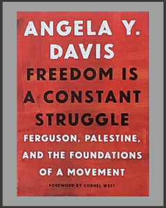 Freedom Is A Constant Struggle-Angela Y. Davis