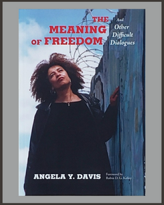 The Meaning Of Freedom-Angela Y. Davis