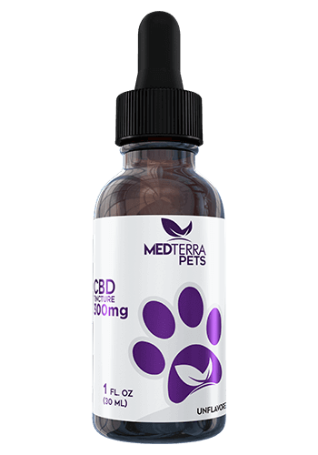 Medterra - CBD Pet Tincture - Unflavored - 150mg-750mg - Oils - 300 MG - Medterra - Have A Nice Day CBD