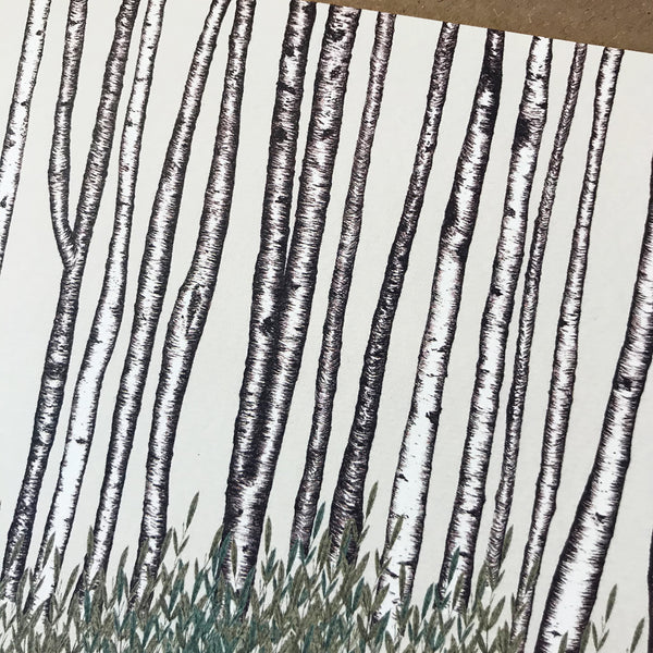 Birch Trees Greetings Card