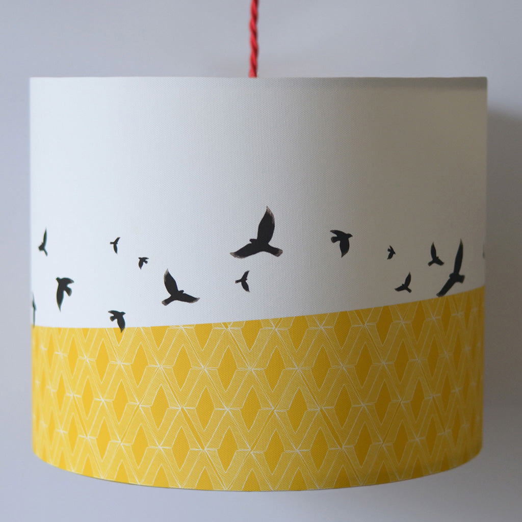 Free Flying Lampshade