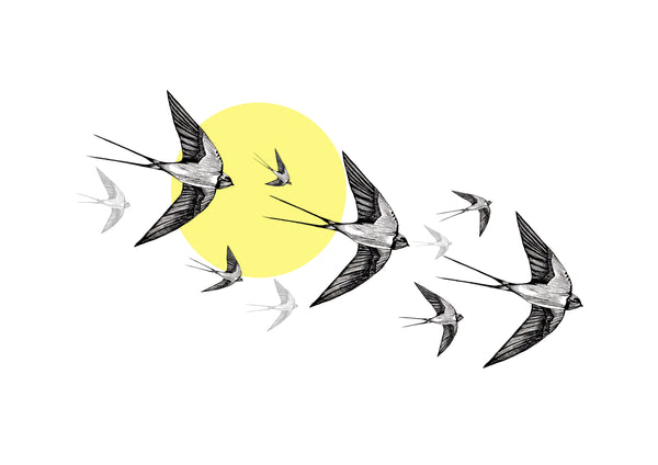 Yellow Swallows Print